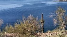Lake Pleasant, Arizona...love the contrast of desert and water